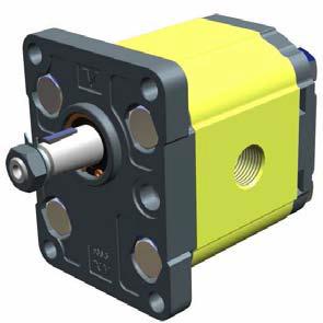 Hydraulic Gear Pumps - Gr.2 - XP207 - ø36.5 FLANGE – TAPER SHAFT