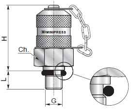 Test couplings for pressure checking - Type A