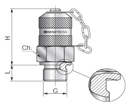 Test couplings for pressure checking - Type B